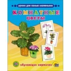 Обучающие карточки Комнатные цветы 16 карточек