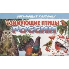 Обучающие карточки Зимующие птицы