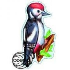 Плакат-мини  вырубной Птица Дятел