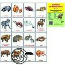 Набор Дикие животные (1) 16 раздат.картин.